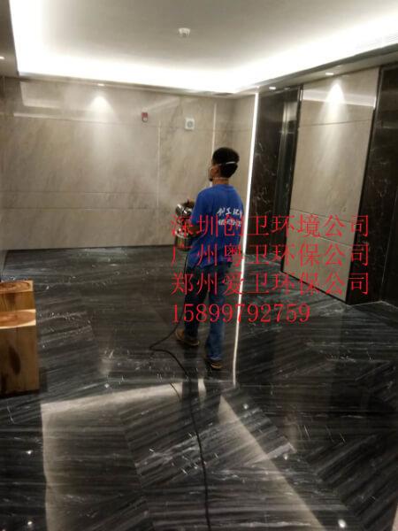 深圳灭跳蚤公司对于跳蚤的消杀方法 公司新闻