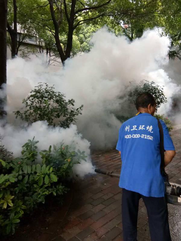 深圳灭苍蝇公司对于苍蝇的灭治