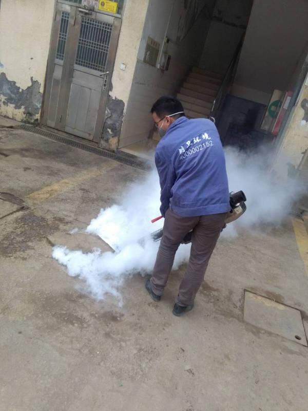 深圳灭苍蝇公司对于苍蝇的灭治 灭蚊蝇