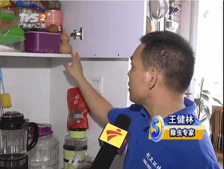 深圳灭蟑螂公司创卫环境如何有效杀灭到处都是的蟑螂