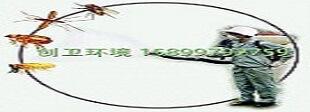深圳消杀公司执行AIB标准-虫控标准是生存的基本