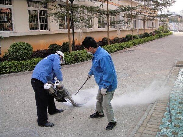 深圳杀虫公司介绍消杀有害生物的范畴及其危害
