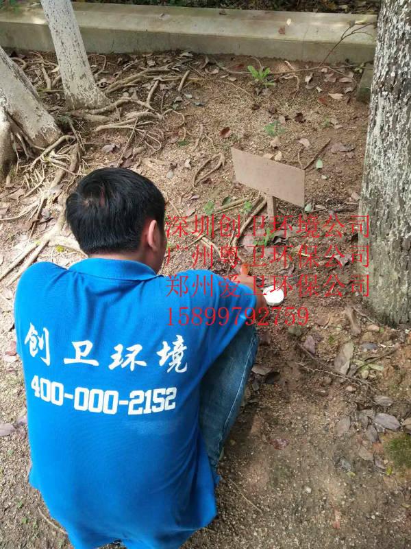 深圳灭白蚁公司园区树木白蚁防治方法