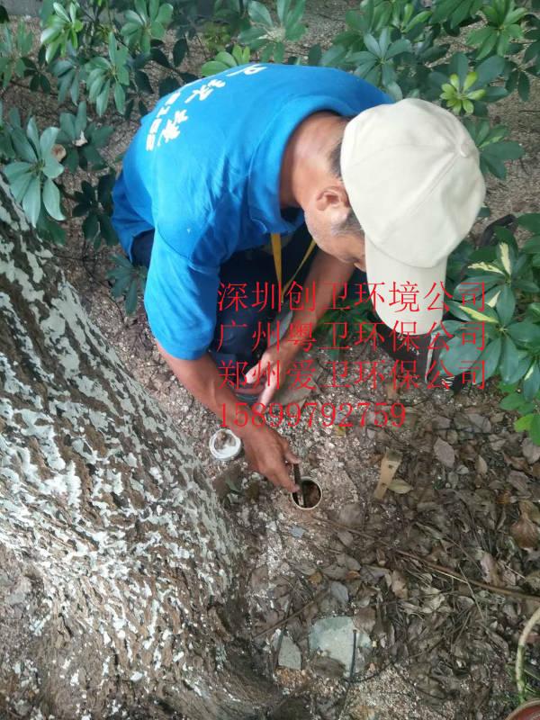 深圳防白蚁公司对于白蚁的防制方法