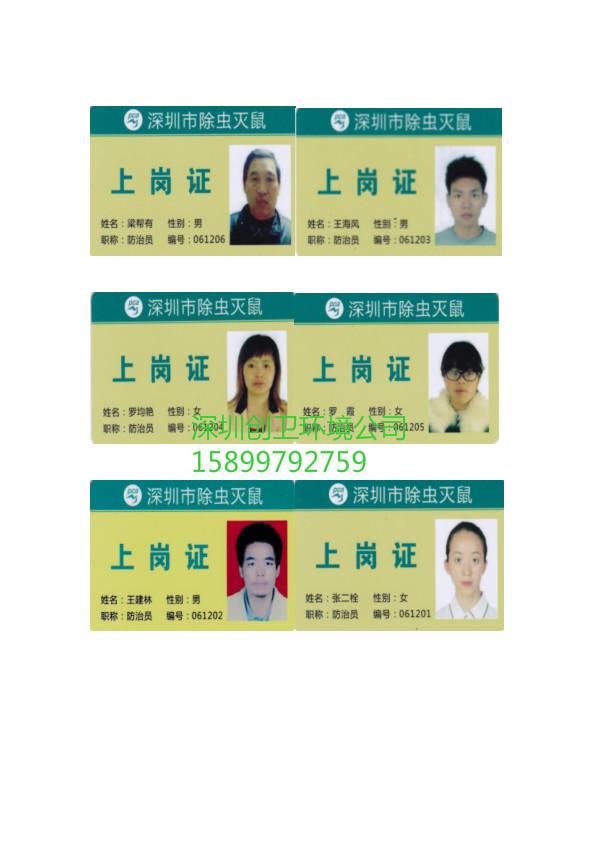 深圳灭鼠公司工作流程
