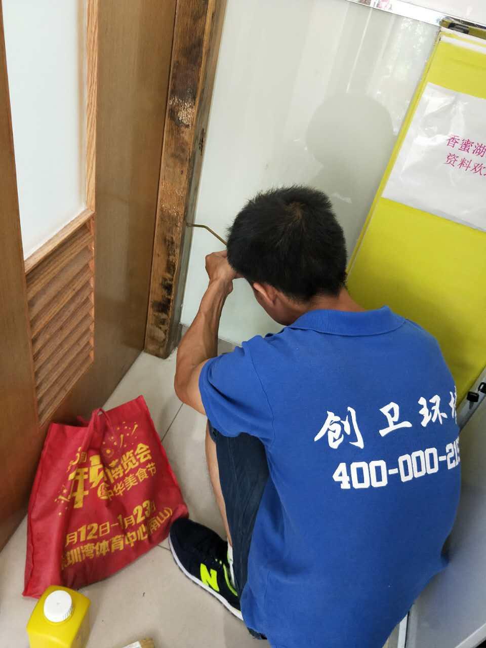 深圳白蚁防治公司认识白蚁的危害