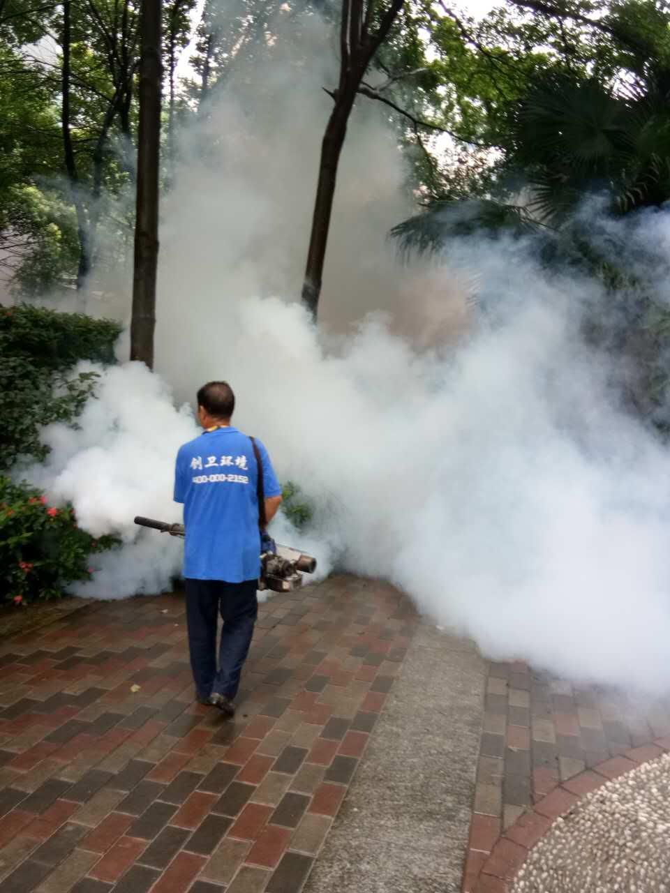如何甄别专业的深圳除四害公司