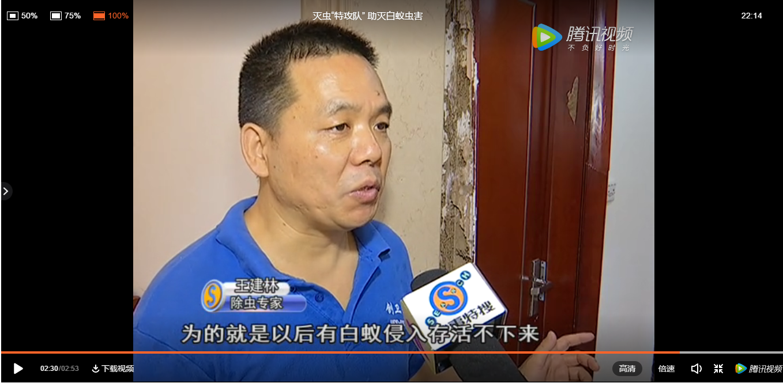白蚁危害大 深圳防白蚁公司科学预防是关键 公司新闻