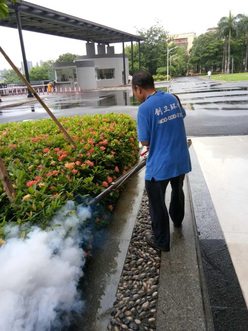 深圳灭鼠公司如何规范除虫灭鼠工作中的言行 公司新闻