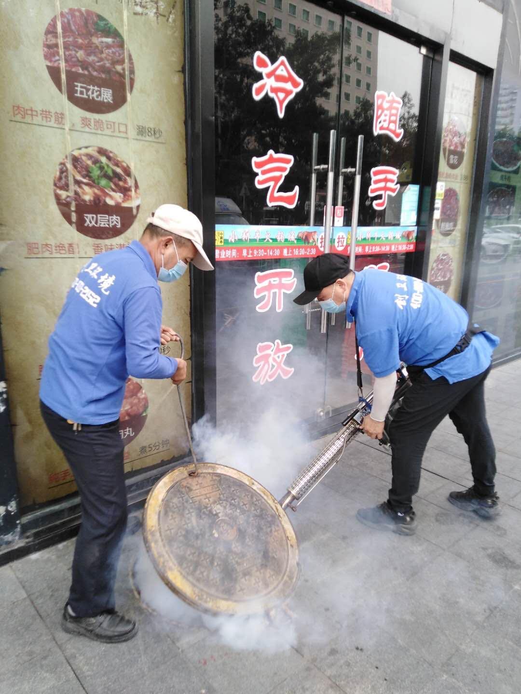 深圳消杀公司小区灭鼠整改方案