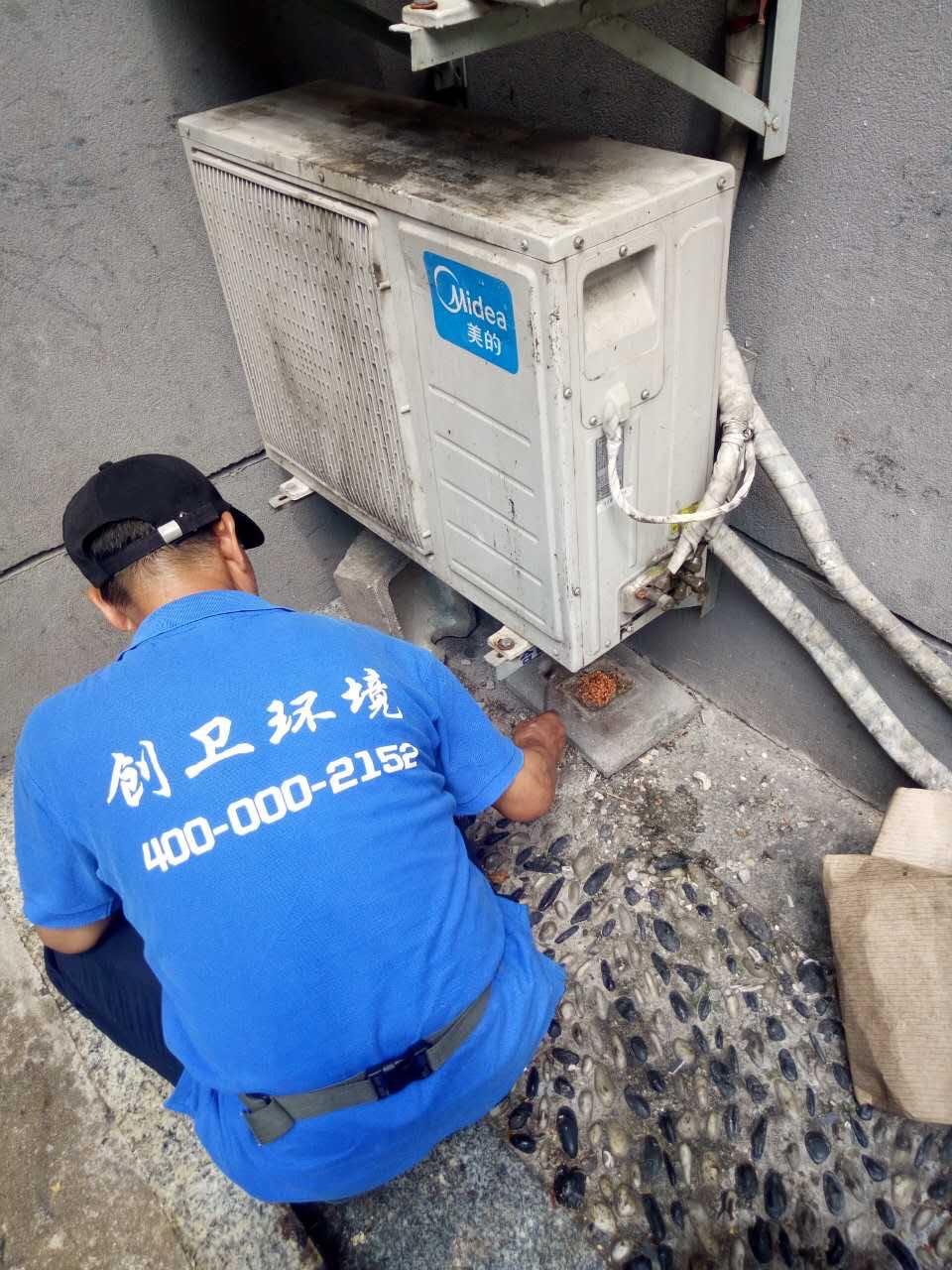深圳灭鼠公司哪家比较专业 公司动态