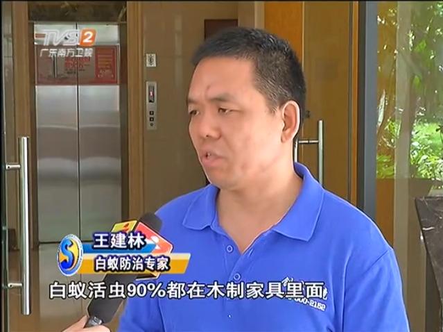 深圳灭白蚁公司的合作协议