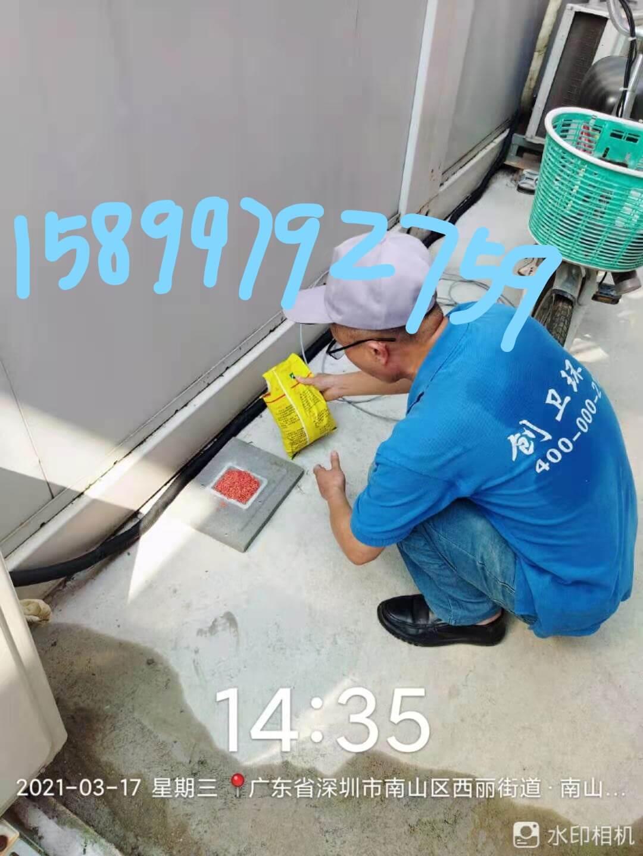 深圳消杀公司关于客户消杀方案的几点释疑