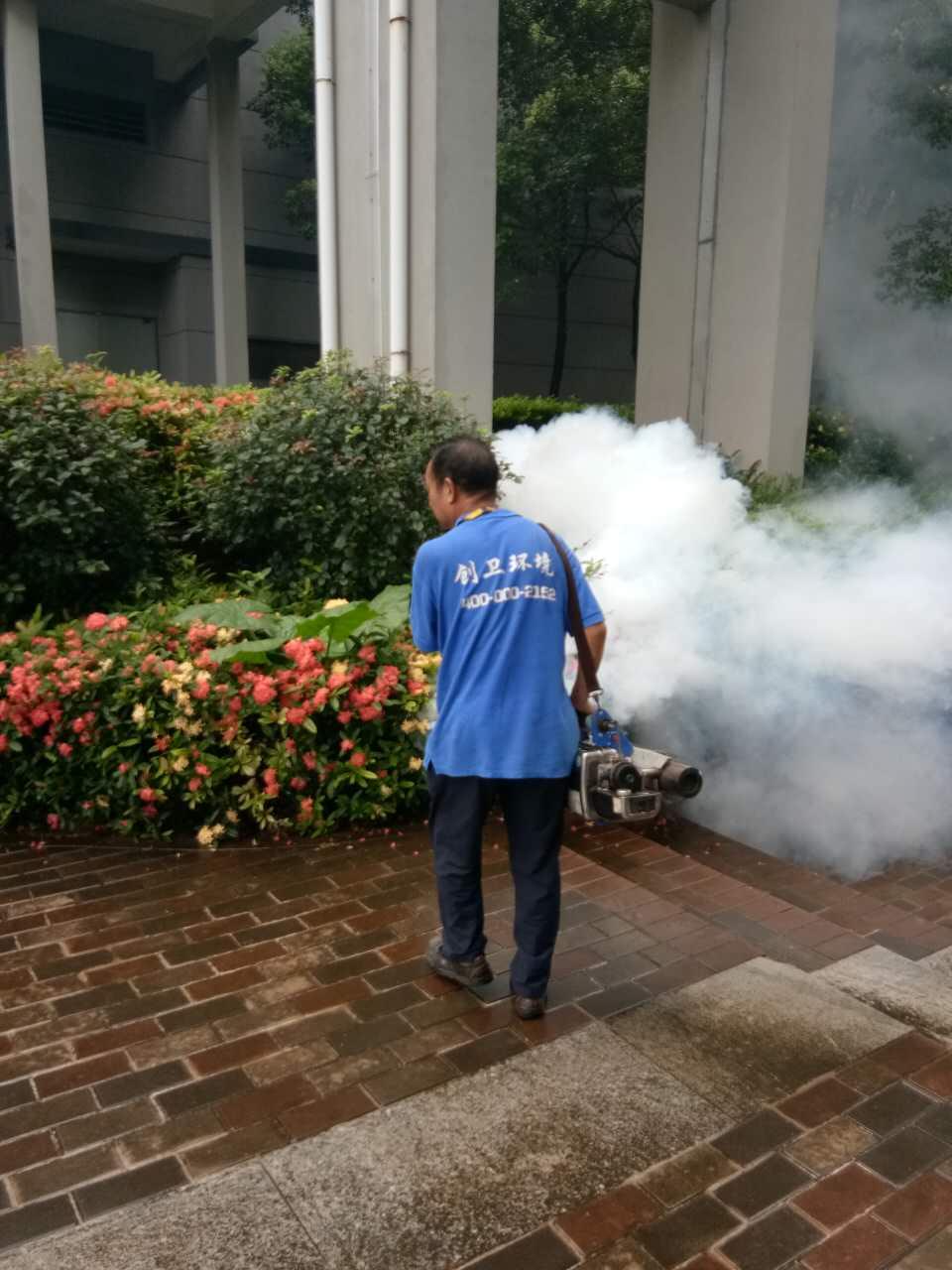 深圳杀虫灭鼠公司是怎么样服务消杀客户的 公司动态