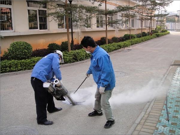 深圳消杀公司专业灭蚊子的方法
